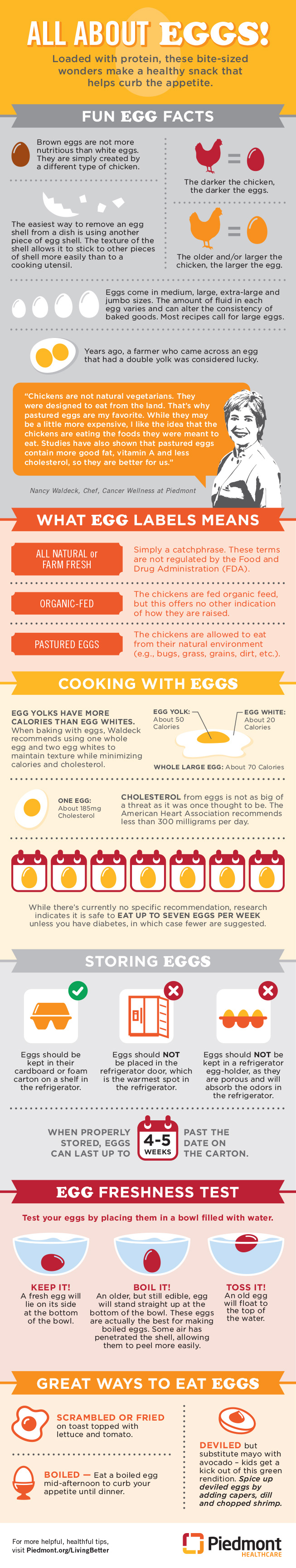 All about eggs! graphic