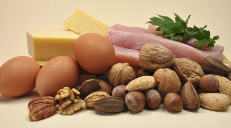 why protein in diet