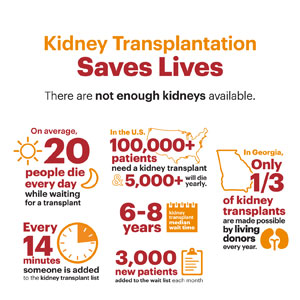 Kidney Living Donor Infographics